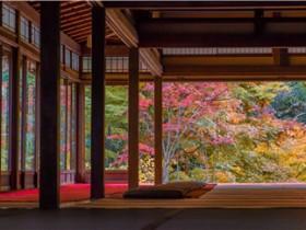 「日语知识」日语不是怎么说-必会-讲解